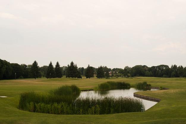 Campo verde con alberi e lago