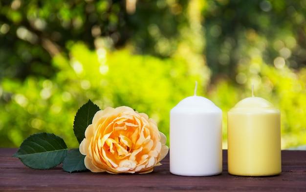 Candele e profumata rosa gialla sul tavolo