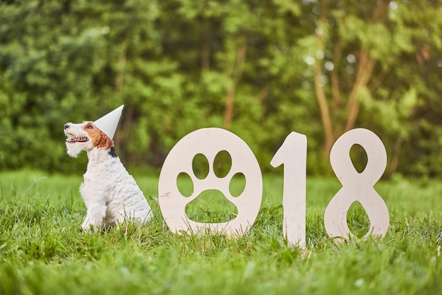 Cane adorabile felice del fox terrier al parco 2018 nuovo anno greetin