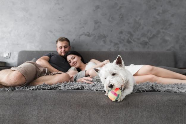 Cane bianco che gioca con la palla e famiglia che si distende sul sofà a priorità bassa