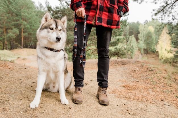 Cane di razza husky seduto sulla strada forestale e guardando dritto mentre il suo proprietario in piedi vicino durante il freddo in ambiente rurale