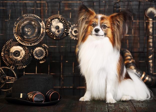 Cane su decorazione steampunk