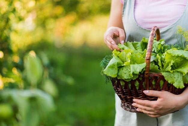 Canestro della tenuta della ragazza del primo piano con le foglie della lattuga