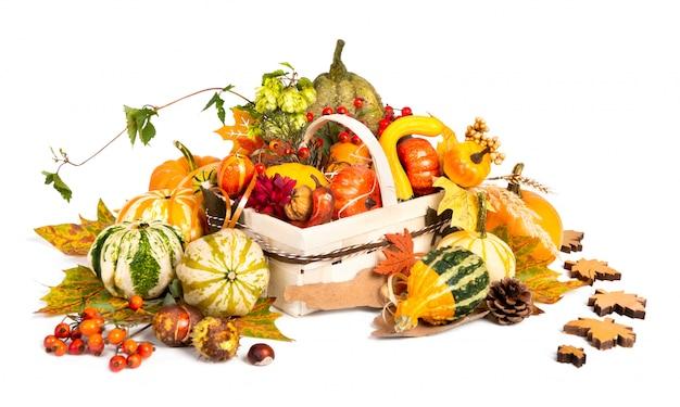 Canestro di autunno su fondo bianco
