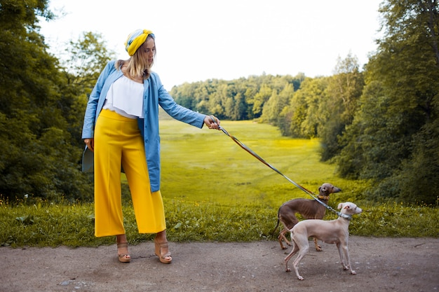 Cani da passeggio, cura degli animali domestici. levriero italiano di razza cane