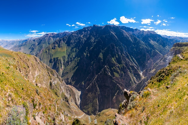 Canyon di colca in perù
