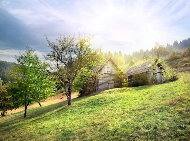 Capanna di legno abbandonata sul prato verde