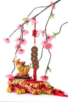 Capodanno cinese 2019 maiale con ciliegio