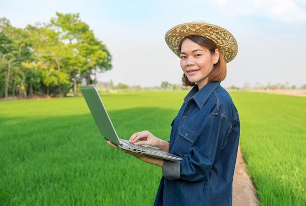 Cappello di usura della donna dell'agricoltore facendo uso del computer portatile che sta sul giacimento verde del riso