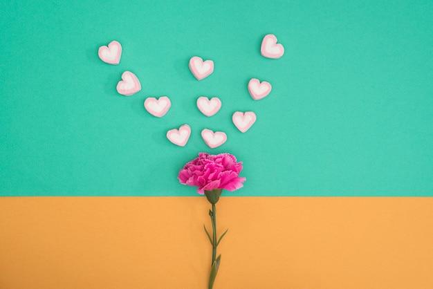 Caramella di valentines con garofano su sfondo verde e arancione