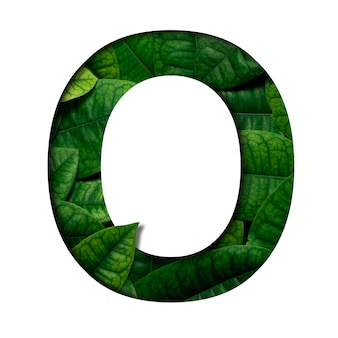 Carattere di foglie o fatto di foglie vere e vere con forma di carattere di carta preziosa. carattere di foglie.