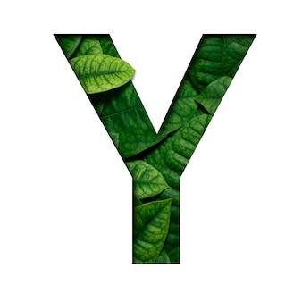 Carattere di foglie y fatto di foglie vere e vere con forma di carattere di carta preziosa tagliata. carattere di foglie.
