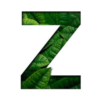 Carattere z con foglie fatto di foglie vere con forma di carattere con preziosa carta tagliata. carattere di foglie.
