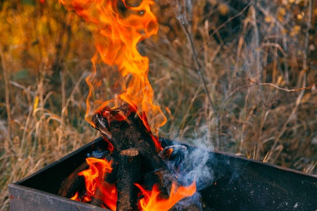 Carbone ardente nel fuoco per barbecue. avvicinamento