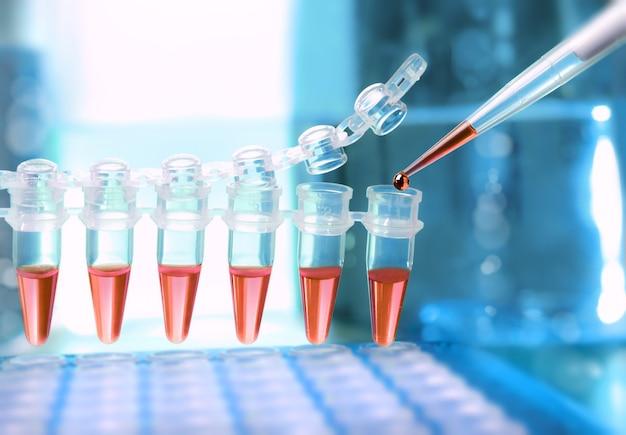 Caricamento dei campioni per l'amplificazione del dna
