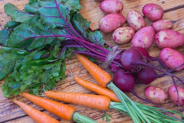 Carote e barbabietole con steli e foglie, frutti di patate.