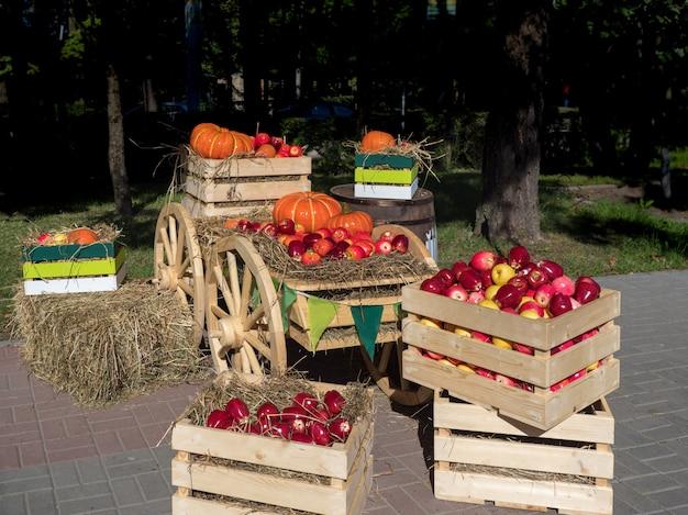 Carrello con scatole di frutta e verdura alla fiera agricola.