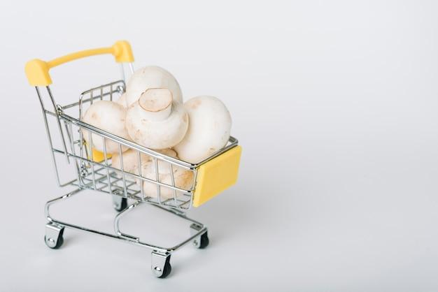 Carrello della spesa pieno di funghi su sfondo bianco