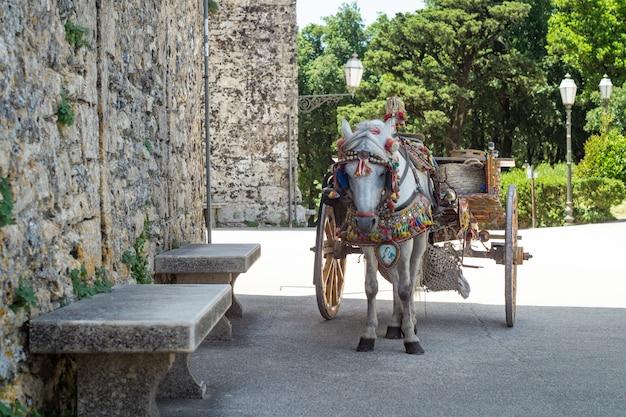 Carretto siciliano con cavallo bianco.