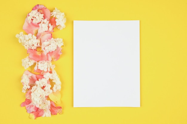 Carta bianca con petali di fiori bianchi e pik