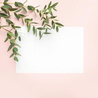 Carta bianca, rami di eucalipto su sfondo rosa pastello. vista piana, superiore, copia spazio