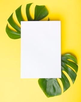 Carta bianca sopra le foglie verdi di monstera su fondo giallo