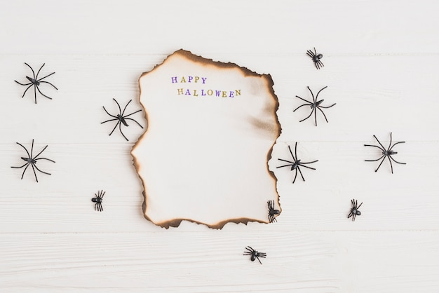 Carta bruciata vicino a ragni ornamentali
