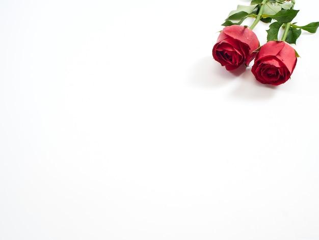 Carta di san valentino. due rose rosse.
