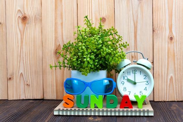 Carta di testo e quaderno di domenica