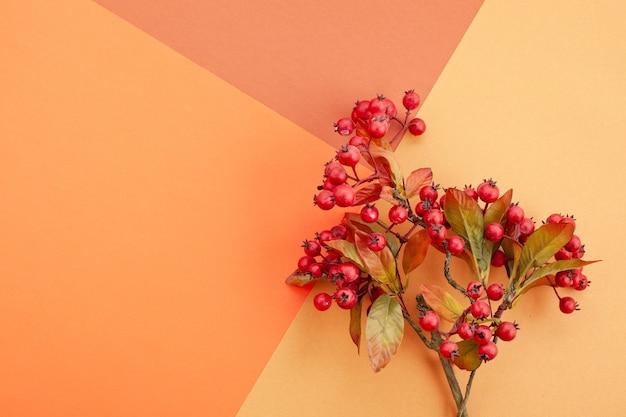 Carta nei colori autunnali con decorazione e copia spazio