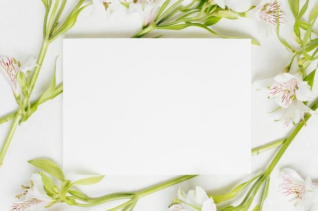 Cartello bianco bianco circondato con fiori di alstroemeria