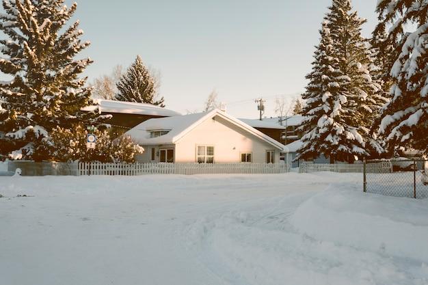 Casa con alberi di pino innevato in inverno