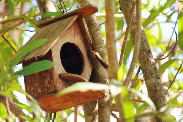 Casa degli uccelli in legno, scatola di nidificazione sull'albero