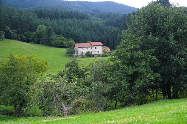 Casa di campagna circondata da alberi, casa colonica basca