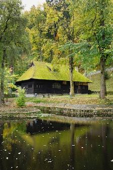 Casa in legno con muschio sul tetto