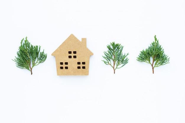 Casa in miniatura con foglie di ginepro drago (juniperus chinensis)