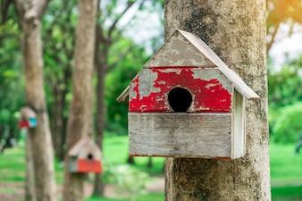 Casa o birdhouse di legno dello scoiattolo di colore rosso che appende sull'albero con il fondo della sfuocatura in parco pubblico