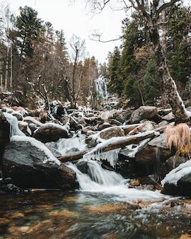 Cascata con alberi caduti, neve e stalattiti nella foresta