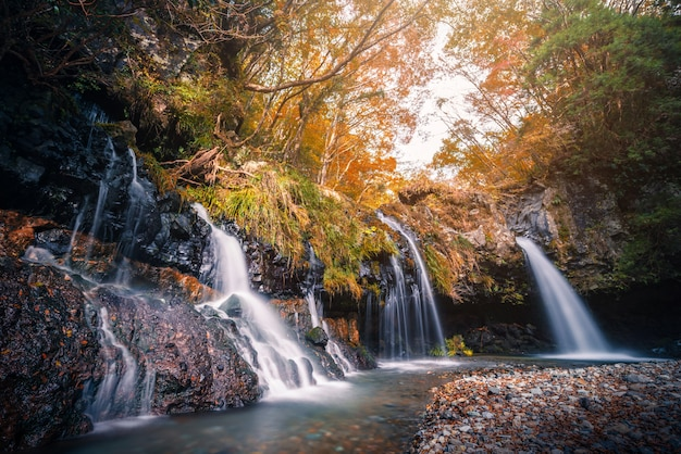 Cascata con fogliame autunnale in fujinomiya, in giappone.