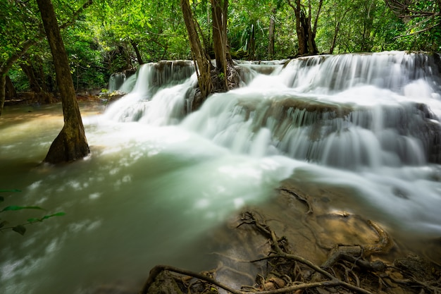 Cascata e flusso blu nella foresta