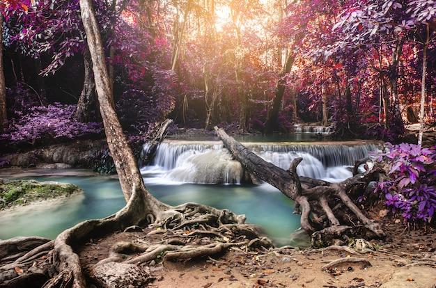 Cascata nella foresta profonda
