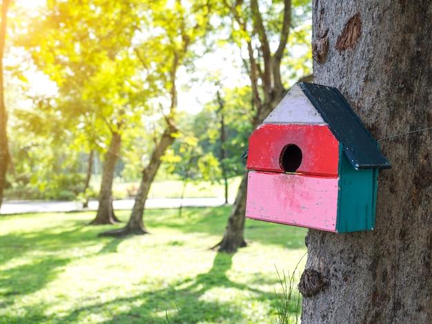 Case dell'uccello variopinte nel parco che appende su un albero