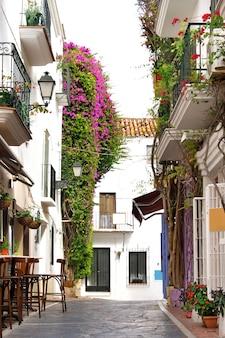 Case e negozi imbiancati a calce tipici del vecchio villaggio dell'andalusia della spagna
