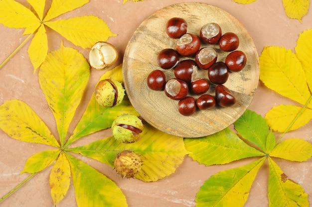 Castagne con foglie di acero in autunno - ippocastano