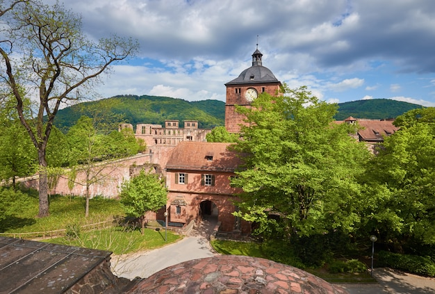 Castello di heidelberg in primavera