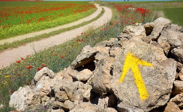 Castilla la mancha saint james way spain