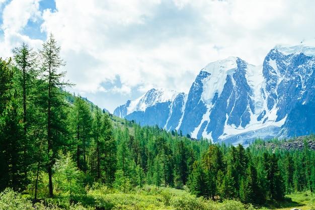 Catena montuosa gigante innevata. cresta rocciosa con neve. incredibile enorme ghiacciaio alla luce del sole. splendide montagne in una giornata di sole. ricca vegetazione di altopiani. pittoresco paesaggio montuoso di natura vivida.