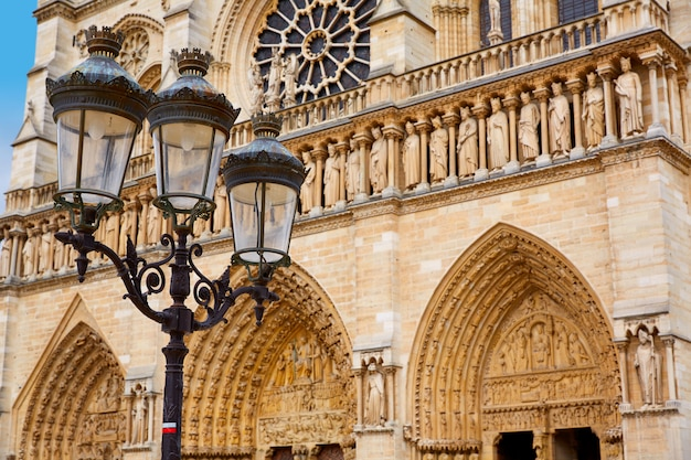Cattedrale di notre dame a parigi francia