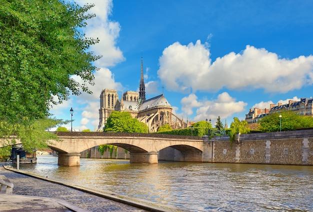 Cattedrale di notre dame a parigi in primavera