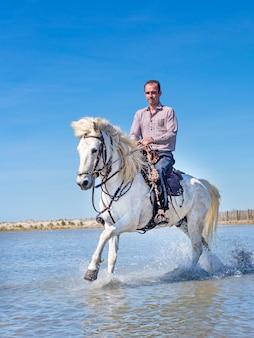Cavaliere e cavallo sulla spiaggia